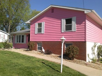Vinyl Siding Painting in Corydon Indiana
